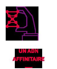 benjamin lecoq graphiste icon identité visuelle socrif icon 2
